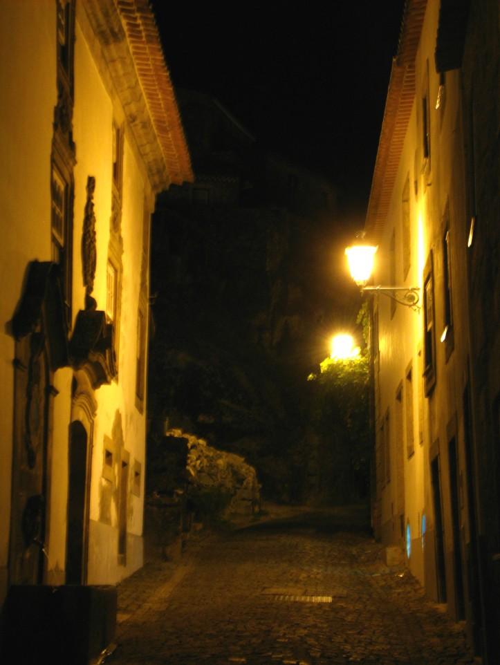 monsanto by night